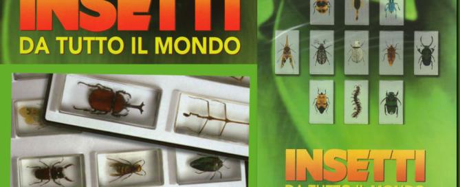 insetti da tutto il mondo in edicola